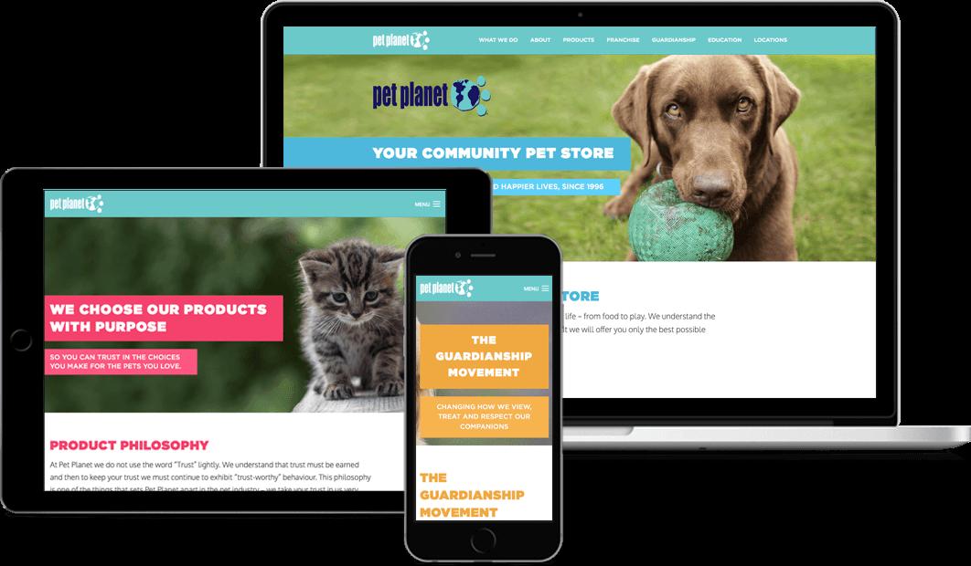 Zoom Junction Professional Custom Website Design